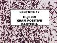 High GC        GRAM POSITIVE BACTERIA