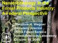 Nanotechnology in the Forest Products Industry: