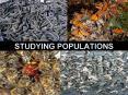 STUDYING POPULATIONS