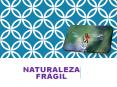 NATURALEZA FRAGIL