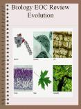 Biology EOC Review Evolution