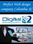Perfect Web design company Columbia SC