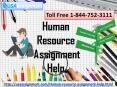 Human Resource Assignment Help | Assignment Expert