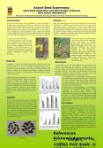 Acacia Seed Supremacy: Does Seed Production and Germination Influence Rare Acacia Abundance