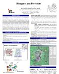 This poster presents overview to a research of agents and robots encompassing designs inspired by pr