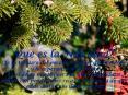 Que es la Navidad? Es la ternura del pasado, el valor del presente y la esperanza del futuro. Es el deseo m