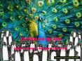 The Peacock and Juno. English I  Louise S. McGehee Schoo