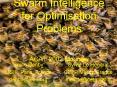 Swarm Intelligence for Optimisation Problems ACAT 2002 Moscow