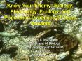 Know Your Enemy: Biology, Physiology, Ecology, and Population Dynamics of Zebra Mussels