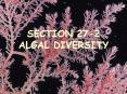 SECTION 27-2 ALGAL DIVERSITY