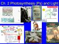 Ch' 2 Photosynthesis Ps and Light