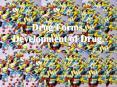 Drug Forms' Development of Drug'