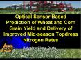 Optical Sensor Based Prediction of Wheat and Corn Grain Yield and Delivery of Improved Midseason Top