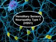 Hereditary Sensory Neuropathy Type 1 HSN1